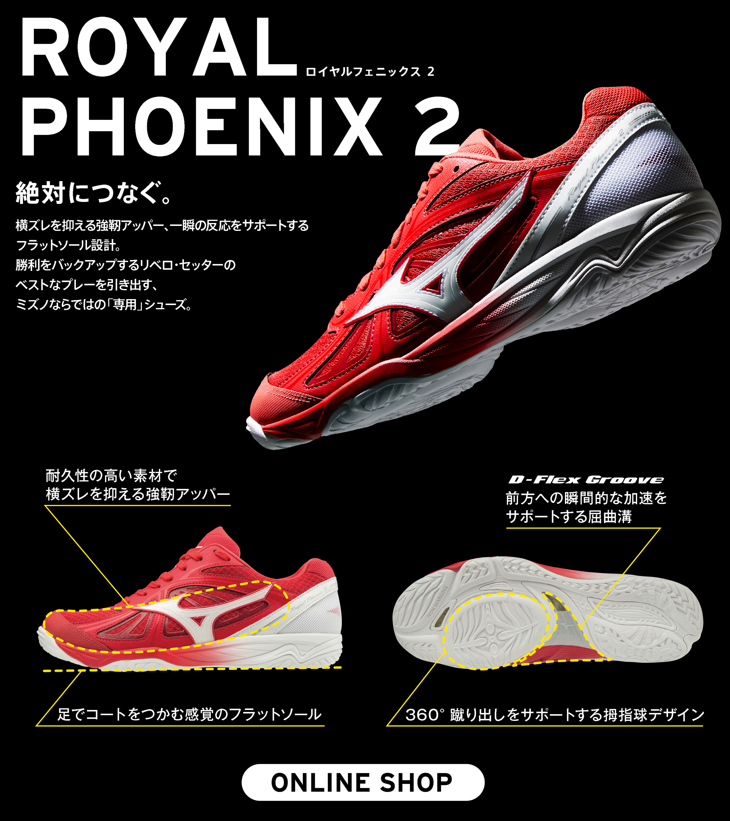 FUNCTION/ROYAL PHOENIX 2